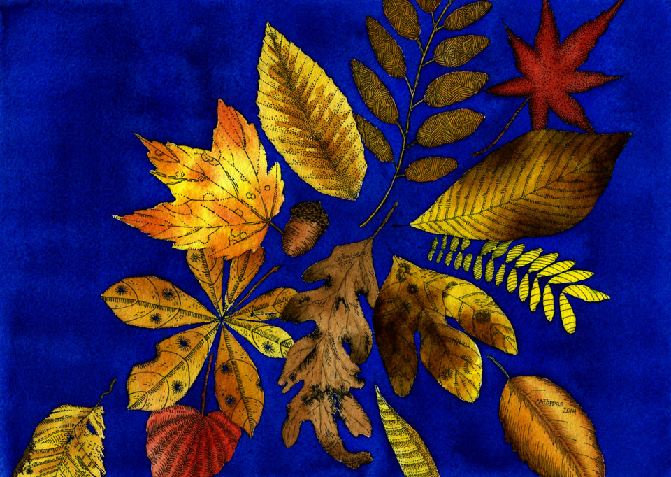 fall leaves ink watercolor