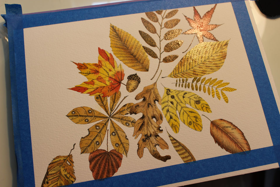 ©2014 Carolyn A Pappas, Leaves on Blue (WIP 2). Pen and ink, 7.5 x 10.5 inches.