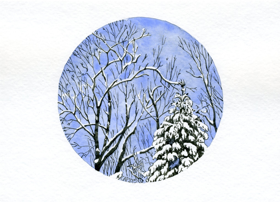 pen and ink winter trees