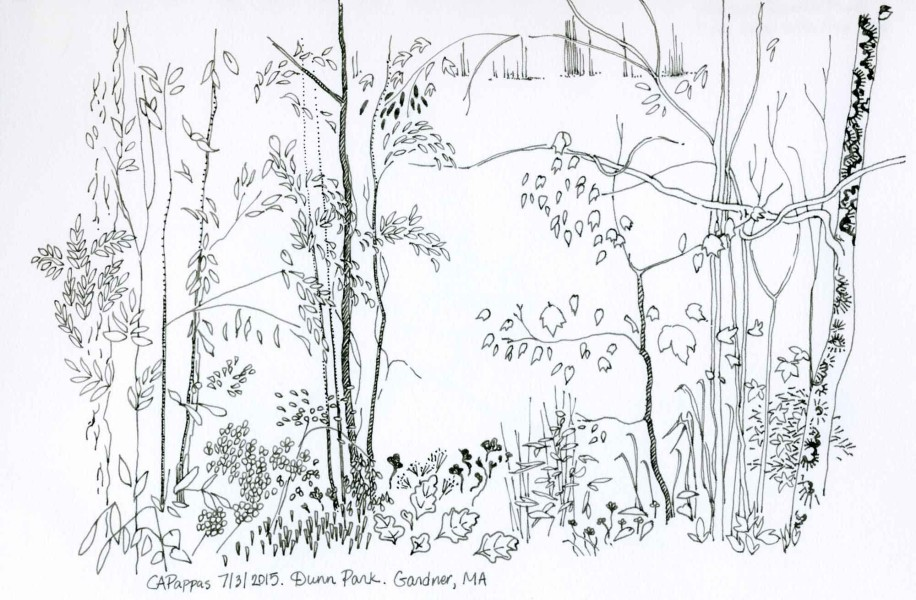 Pen and ink landscape by Carolyn A Pappas
