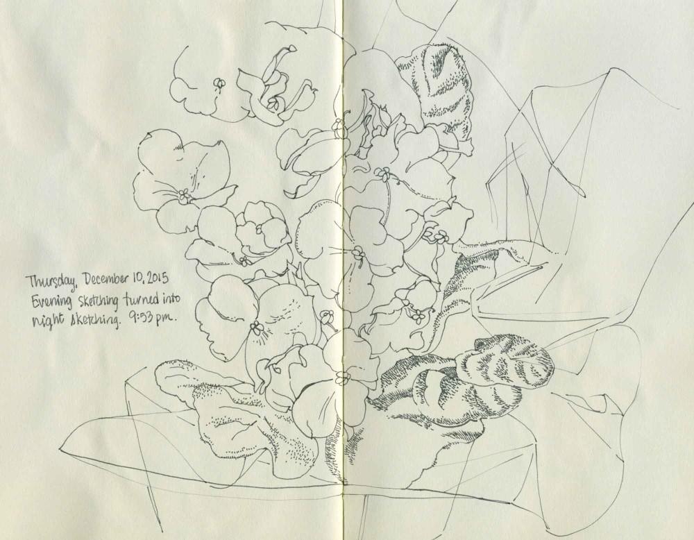 African Violets sketch