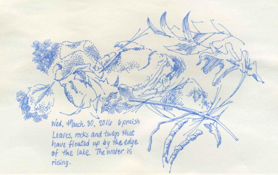 lakeside nature sketch
