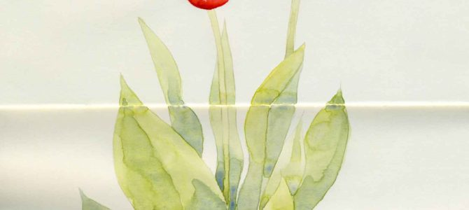 Watercolor Tulips in Moleskine