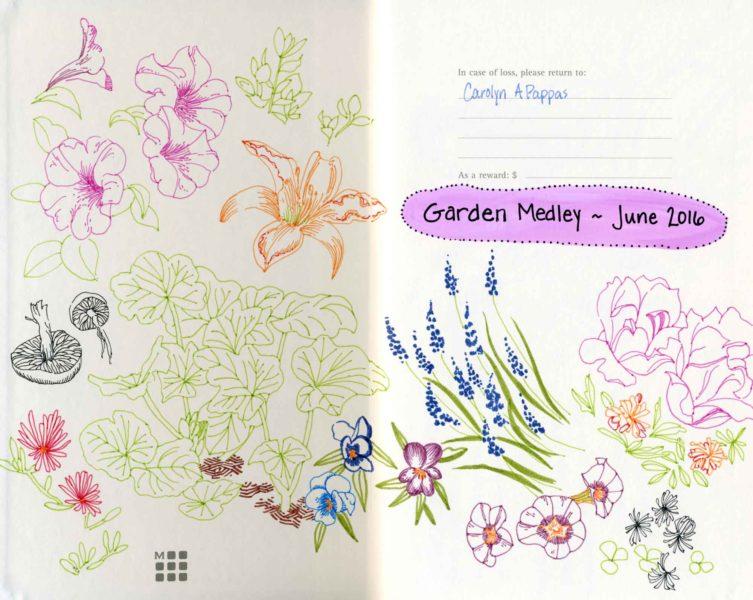garden doodle