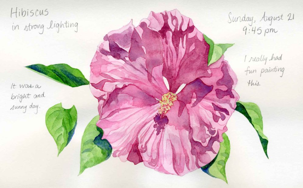watercolor hibiscus