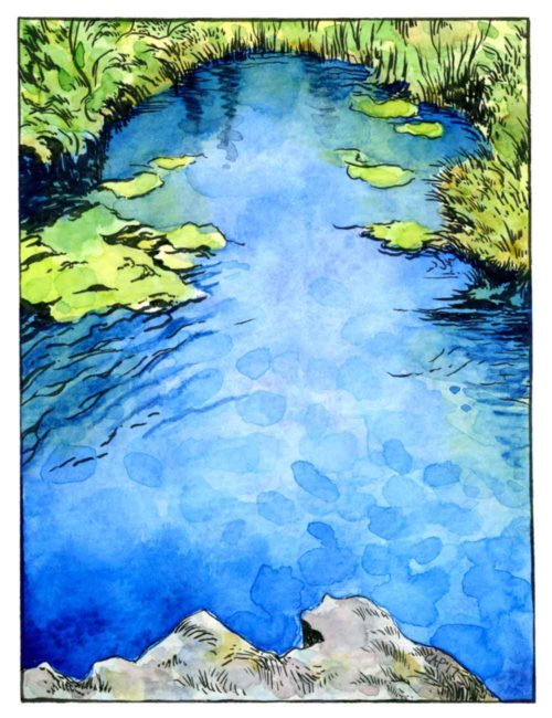 mexican pond painting